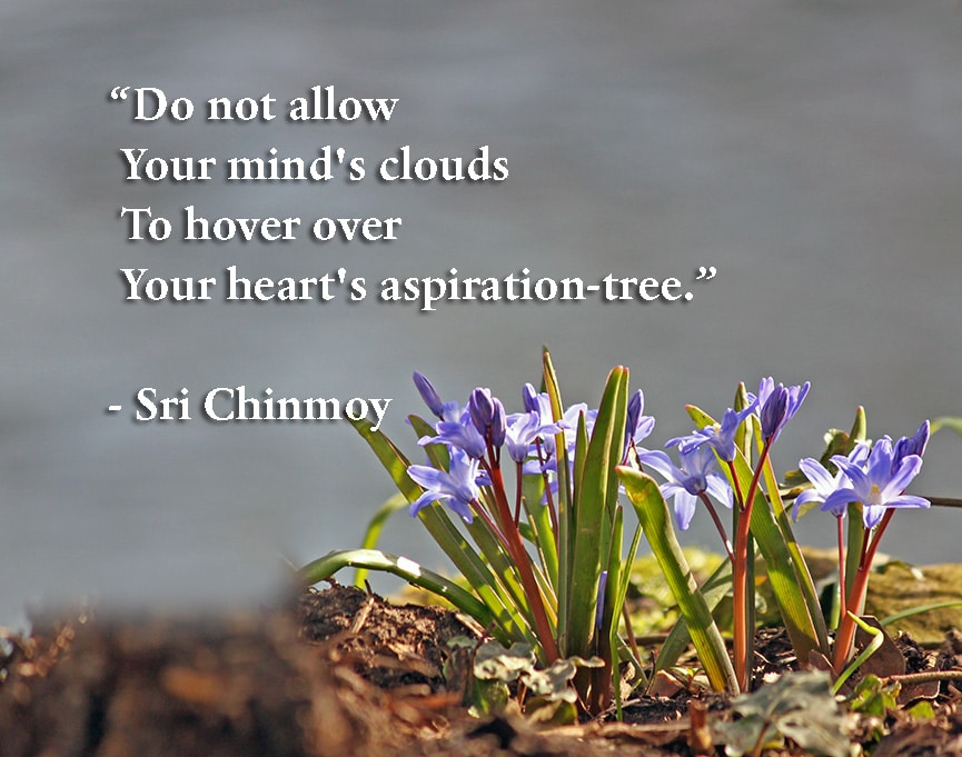 do-not-allow-your-minds-clouds