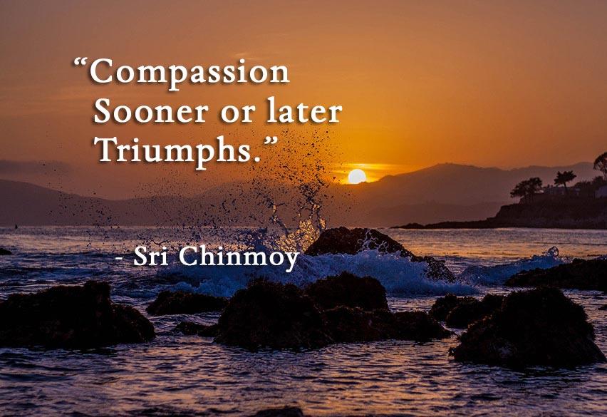 compassions-triumphs